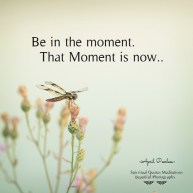 Be in the moment. That Moment is now.. April Peerless