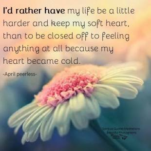 I'd rather have my life be a little harder and keep my soft heart, than to be closed off to feeling anything at all because my heart became cold. A.Peerless