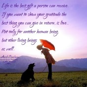 Life is the best gift a person can receive. If you want to show your gratitude the best thing you can give in return is love.. Not only for another human being but other living beings as well. April Peerless