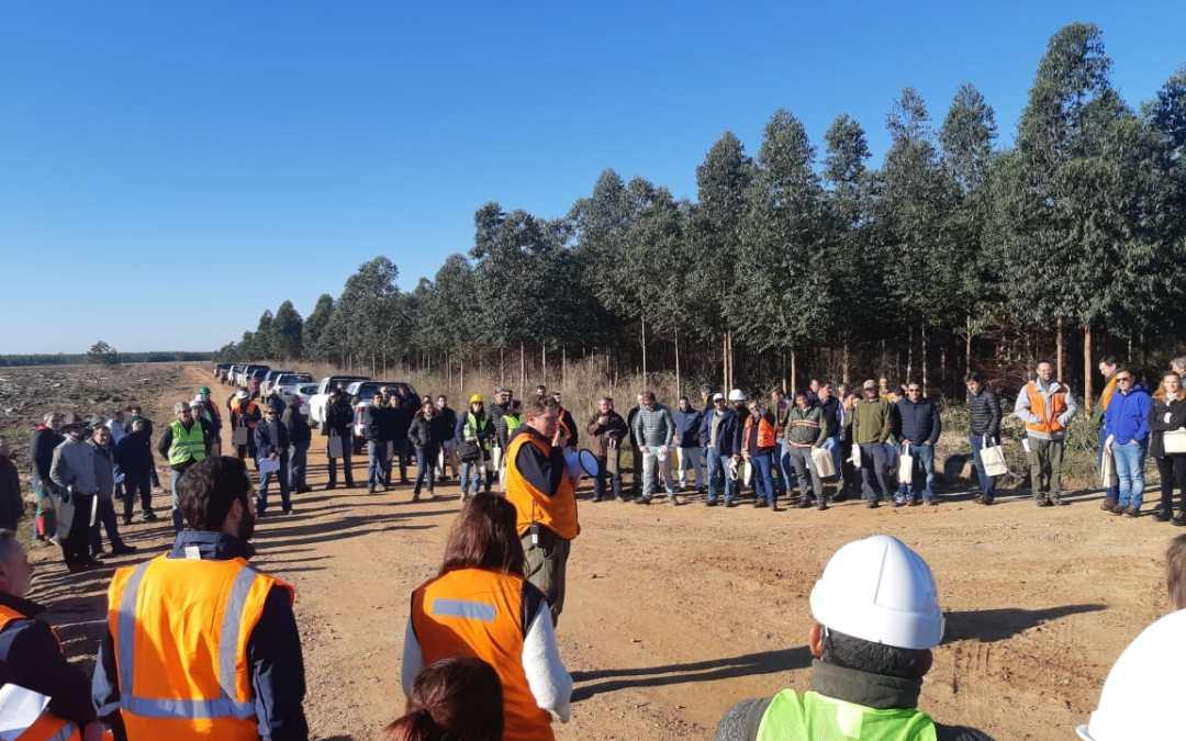 La APEFIC participó en la reunión anual de consorcios forestales