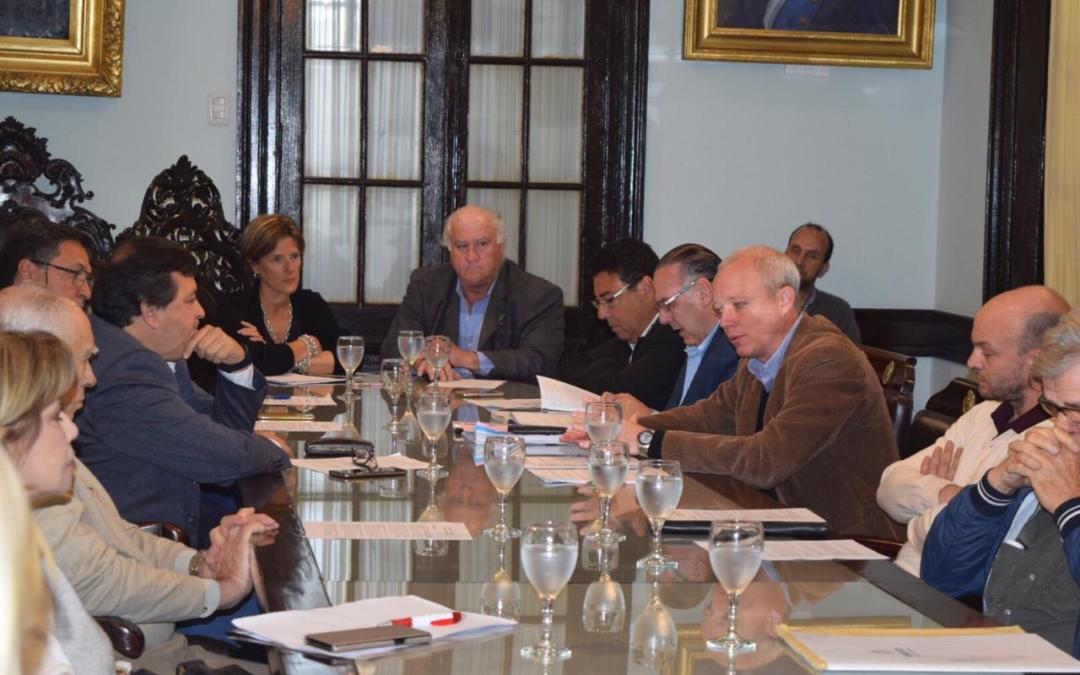 Senadores y referentes forestales trabajarán juntos para concertar la ley PEFIC