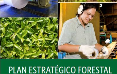 Corrientes es referencia nacional en el desarrollo estratégico e institucional de la cadena forestal