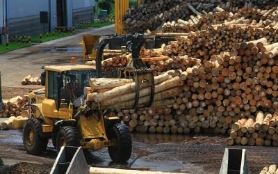 Disponibilidad y abastecimiento de rollos en Corrientes