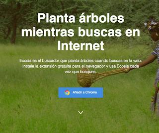 Un motor de búsqueda que…planta árboles