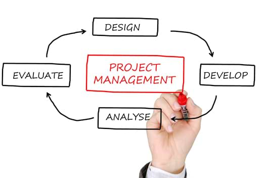 conduite de projets innovants,Gestion de projets, AMOE