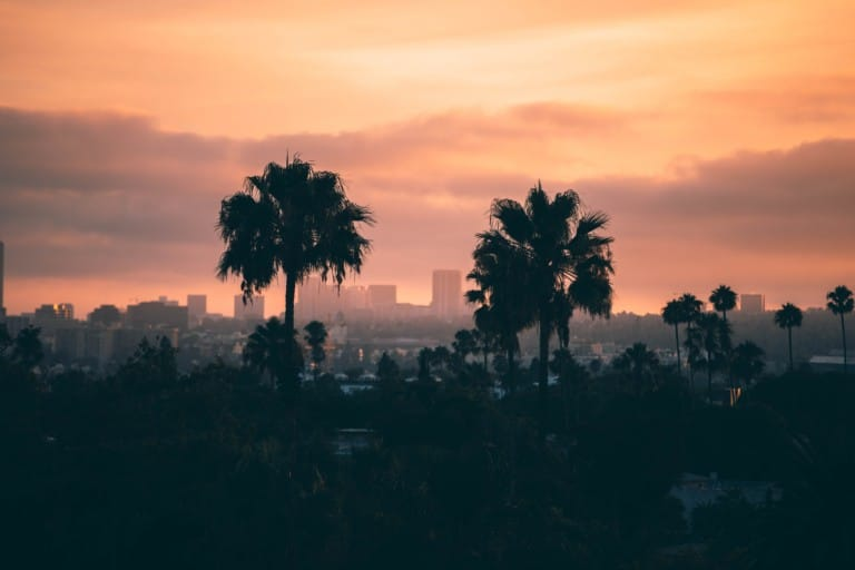 probate, los angeles, estate planning, will