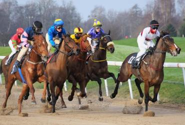 Tips For A Great Day At The Races