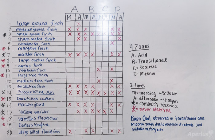 bird project chart