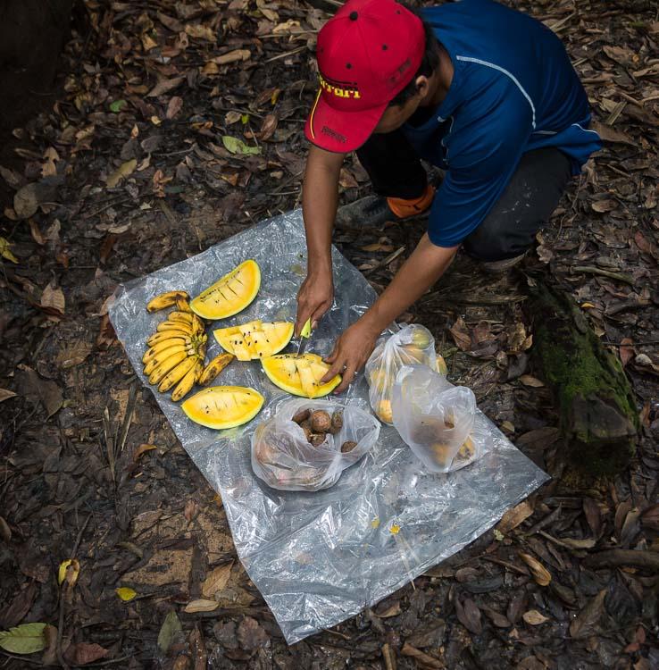 jungle guide from bukit lawang cutting fruits