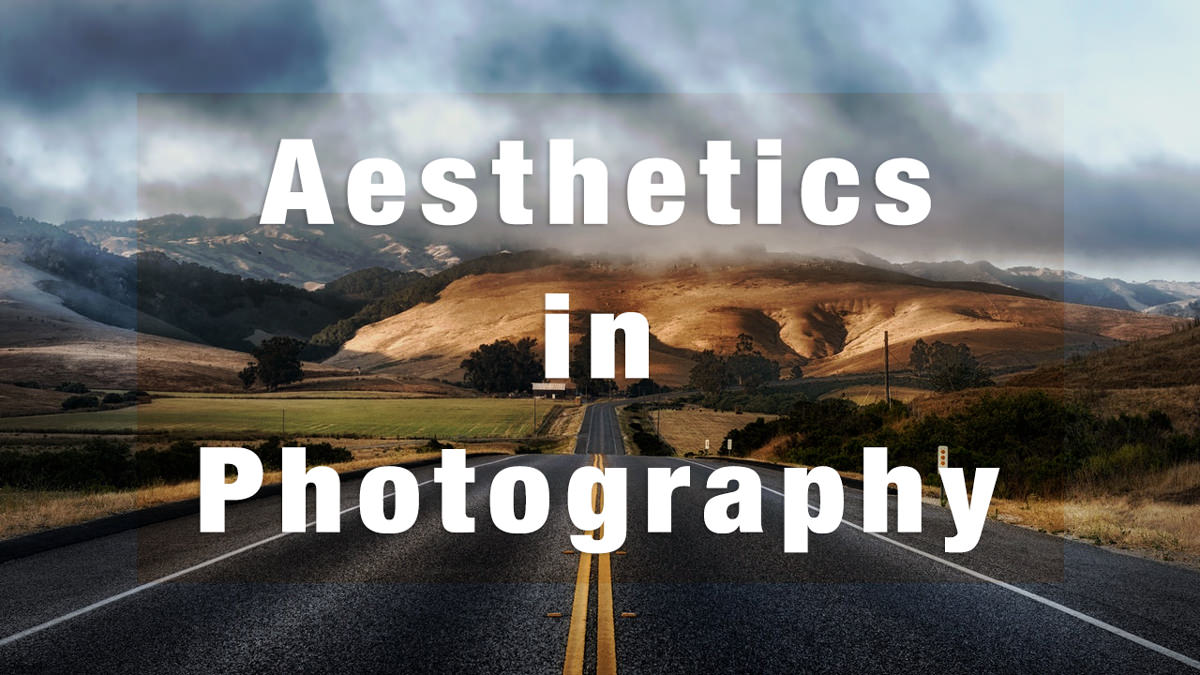 What is Aesthetics in Photography? Everything You Need to Understand