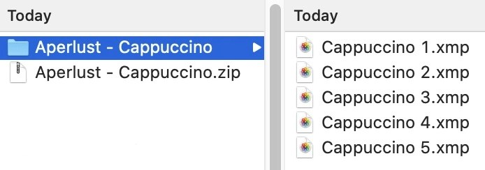 Lightroom ZIP and XMP preset files