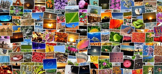 several image prints