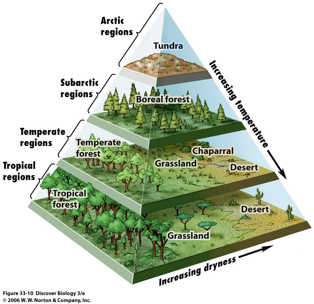 Ecosystems Biomes