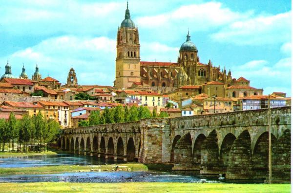 Northern Spain City Of Salamanca Bag