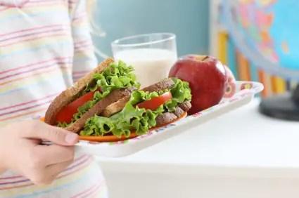 https://i0.wp.com/apetitoenlinea.com/wp-content/uploads/2014/07/healthy-school-lunch.jpg?resize=425%2C282&ssl=1