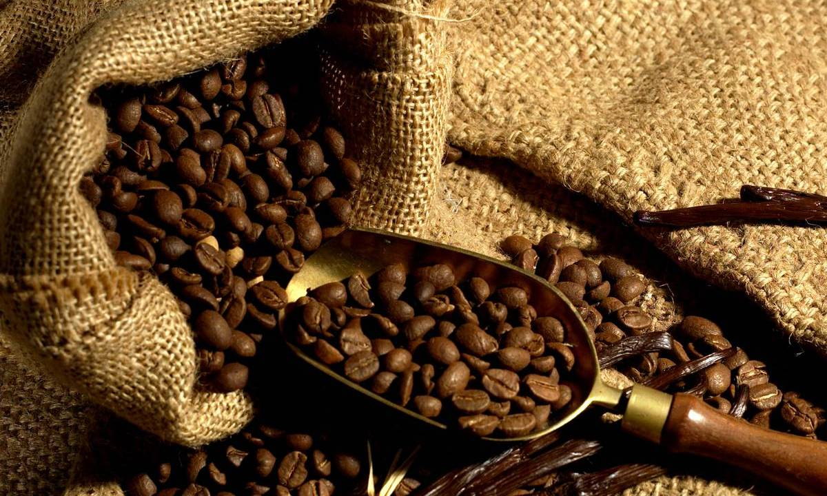 https://i0.wp.com/apetitoenlinea.com/wp-content/uploads/2018/10/cafe10_en_grains_-_credit_irt_-_studio_lumiere_dts_04_2017_0.jpg?resize=1200%2C720&ssl=1