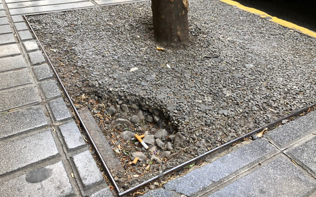 El PP pide que se realice un mantenimiento en los alcorques de la Avenida al Vedat tras las quejas por caídas y tropiezos