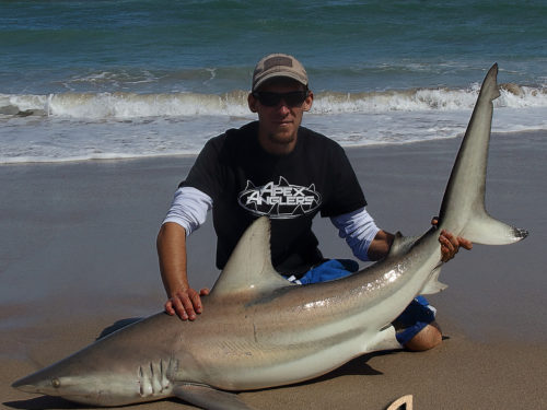 AJ Rotondella with a Blacktip Shark.