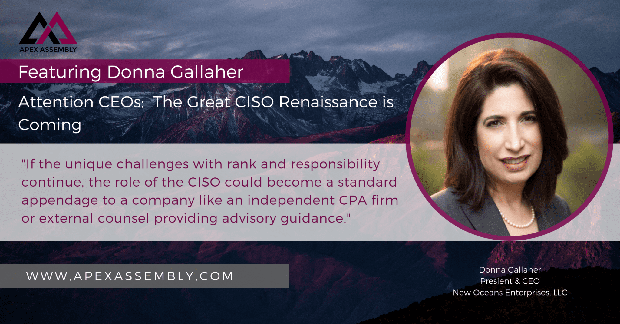 Ciso Resume Attention Ceos The Great Ciso Renaissance Is Coming Apex Assembly