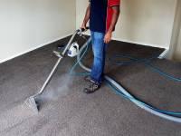 Best Professional Carpet Deodorizer  Floor Matttroy