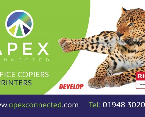 Apex Connected leading provider Ricoh Develop