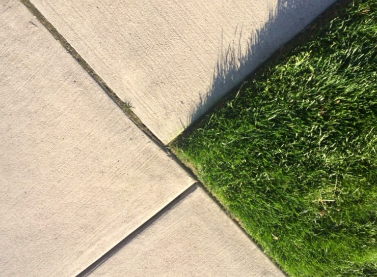 lawn to pavement edging