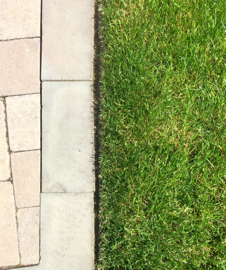 Subtle edging between turf and paved area