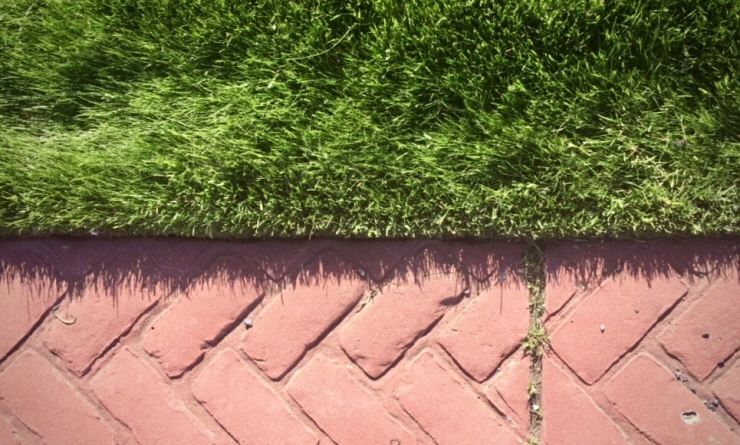 lawn edging and mowing