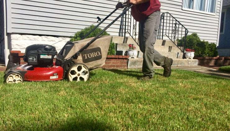 crewman turf maintenance
