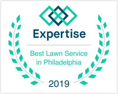 Expertise best lawn service in philadelphia 2019
