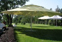 Zeta Large Umbrellas - Large Parasols | Apex Shelters