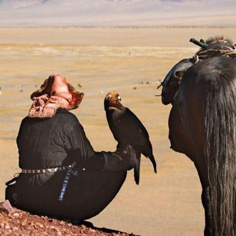 Falcoeiro Cazaquistão