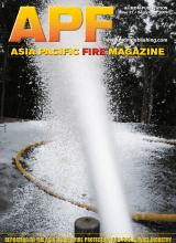 APF Issue 31-1