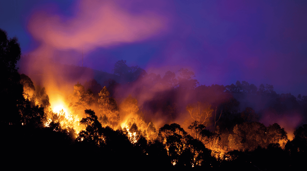 The report provides fine scale detail on areas likely to become future pressure points for bushfire.
