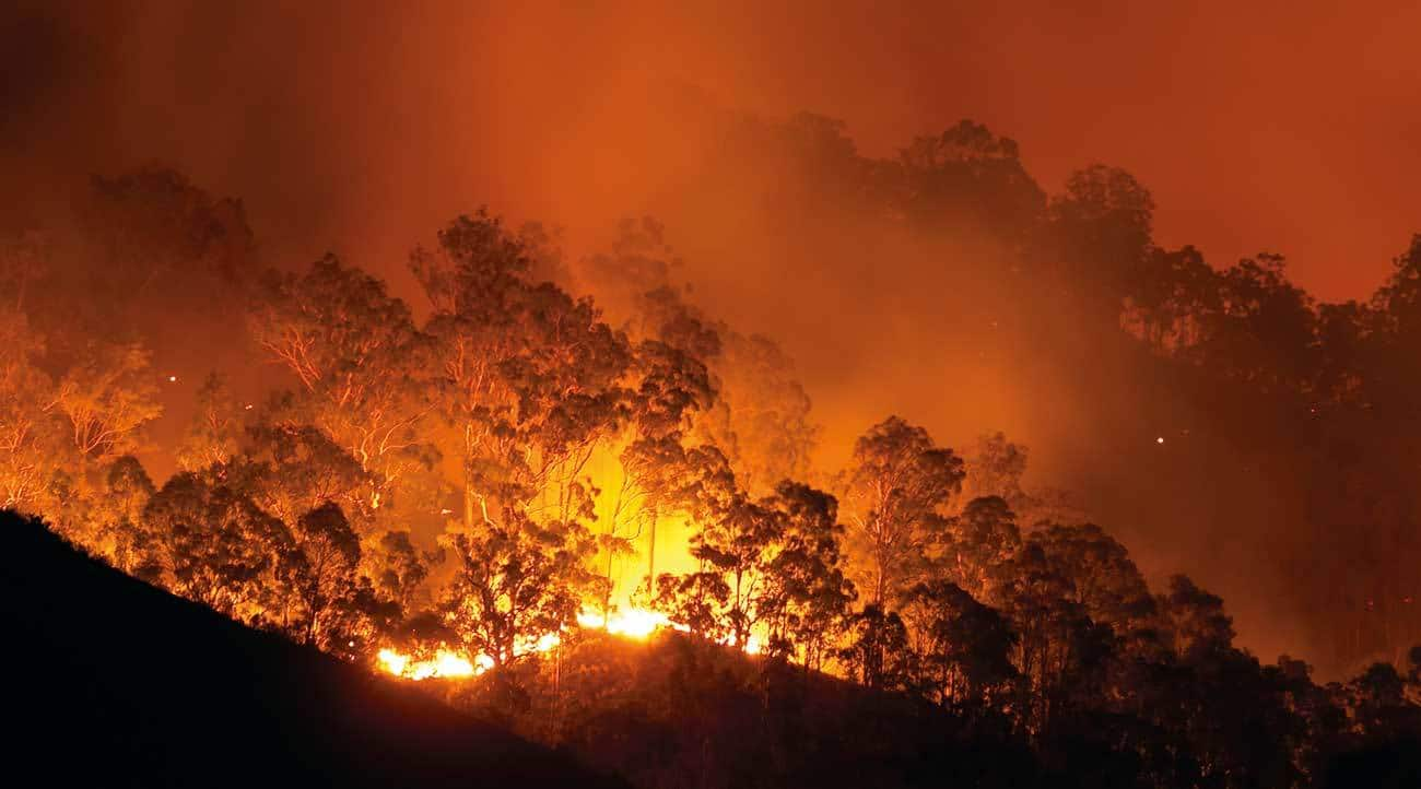 As bushfires continue to increase in their frequency and severity, the provision of effective warnings has become a critical capability for emergency services.