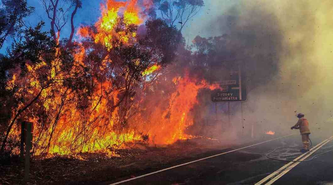 With the costs of natural hazards rising, mitigating risk is key. Here the NSW Rural Fire Service is undertaking a hazard reduction burn at Ku-ring-gai in Sydney's north.
