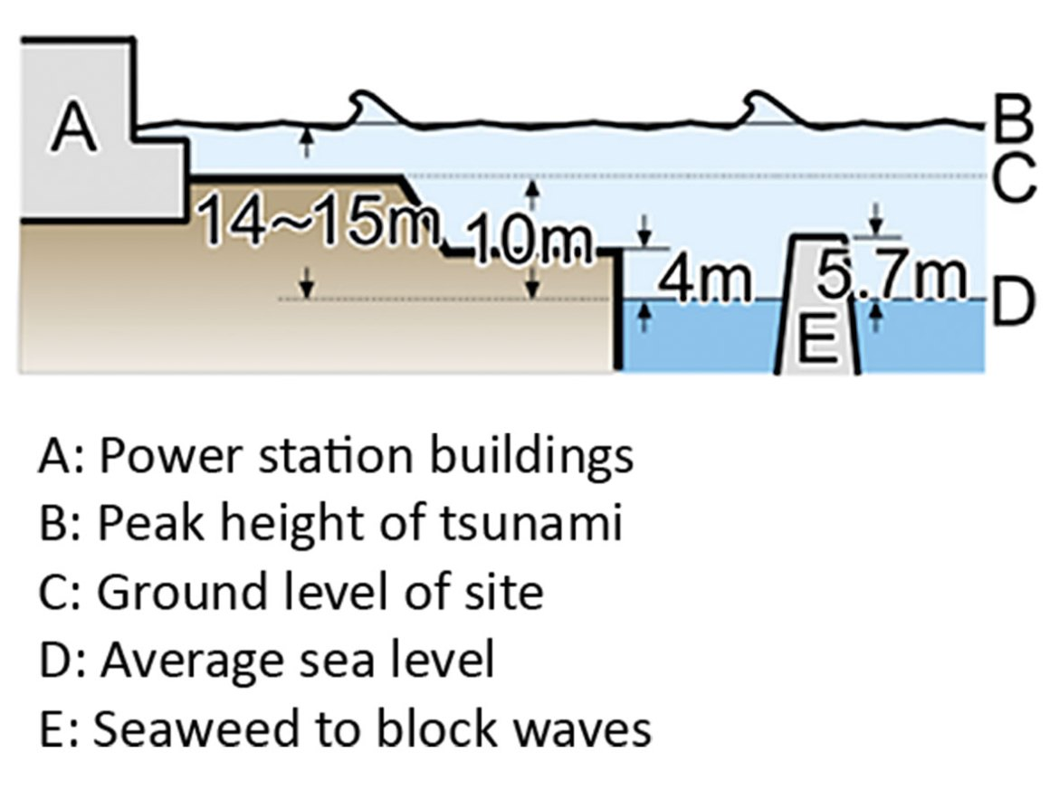 Figure 2: The height of the tsunami that inundated the power-station buildings.