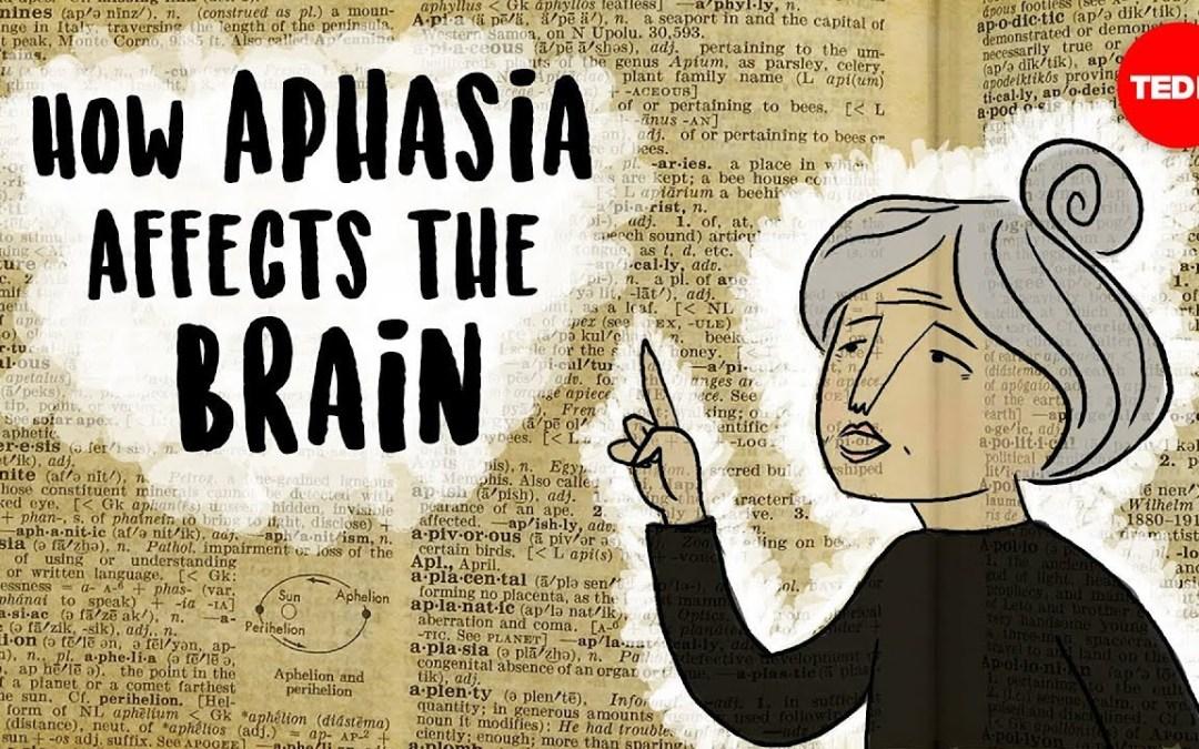 Hogyan érinti az agyat a stroke-t, az agyi sérülést ?! (magyar fordítással)