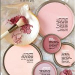 BLUSH-PINKS paint