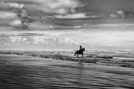 Milou_Scotland_Beach_082015-4665-20150823-Edit