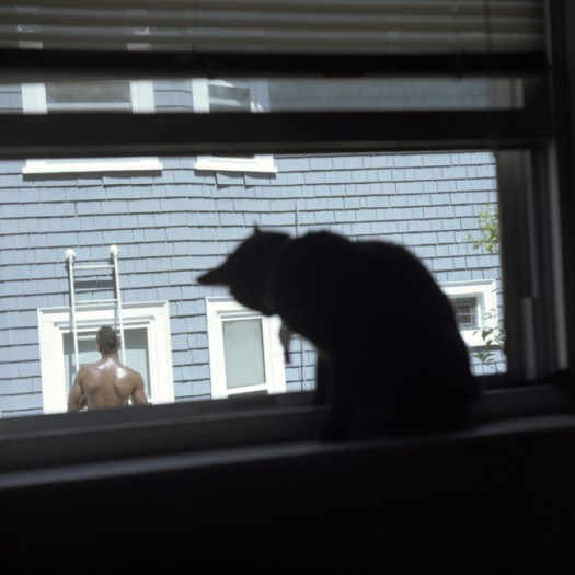 11_WindowShopping