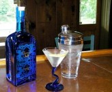 Bluecoat Gin