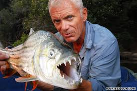 I know 400 ways a fish can kill a man.