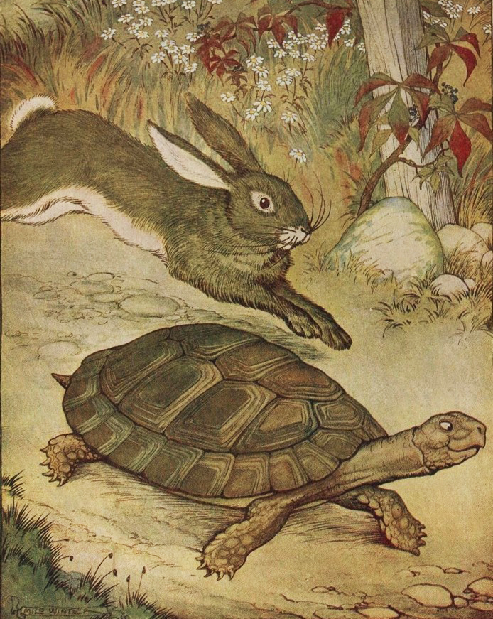 Are You a Tortoise or a Hare? About Work.