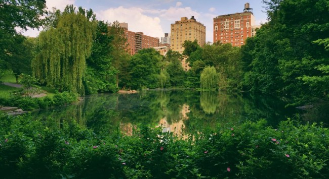 A Question I'm Often Asked: 17 Fun Places to Visit in New York City.