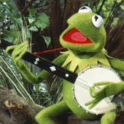 "Ever Actually Listened to the Words of Kermit's Song ""Rainbow Connection?"" I Never Had."