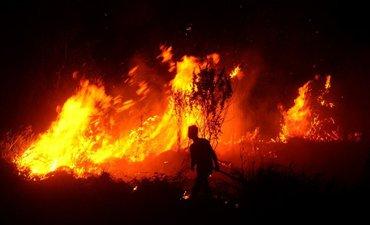 satu-relawan-meninggal-dalam-kebakaran-hutan-di-ponorogo