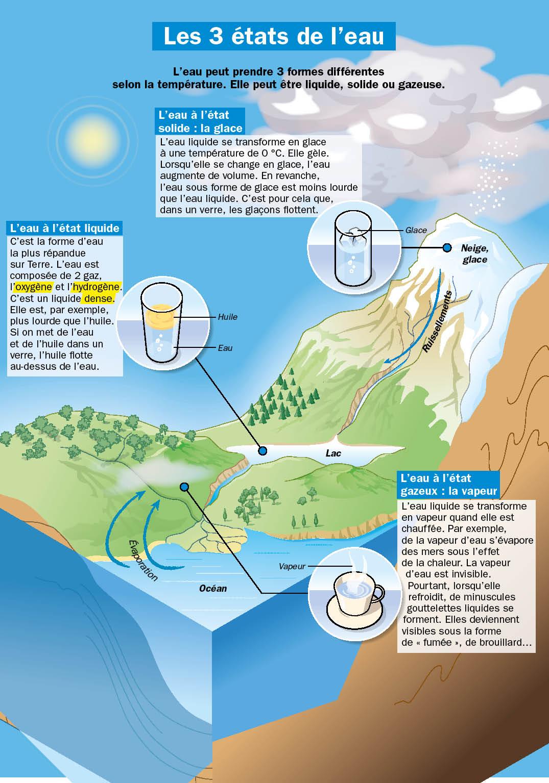 Les différents états de l'eau - Sciences Questionner le