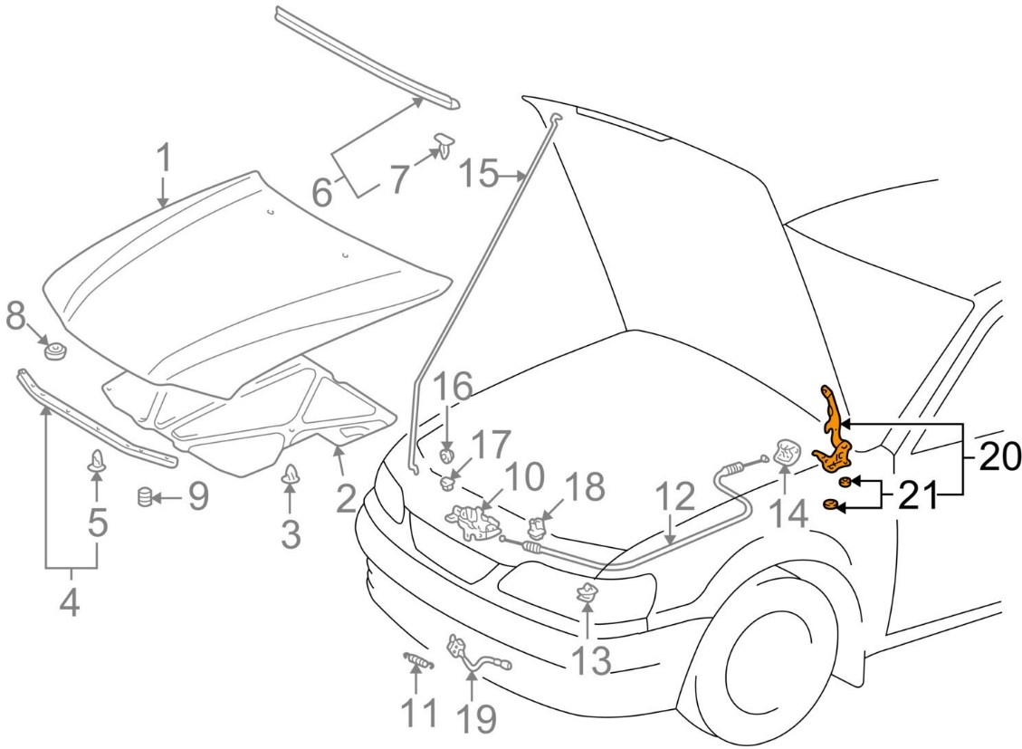 For Toyota Genuine Hood Hinge Front Right