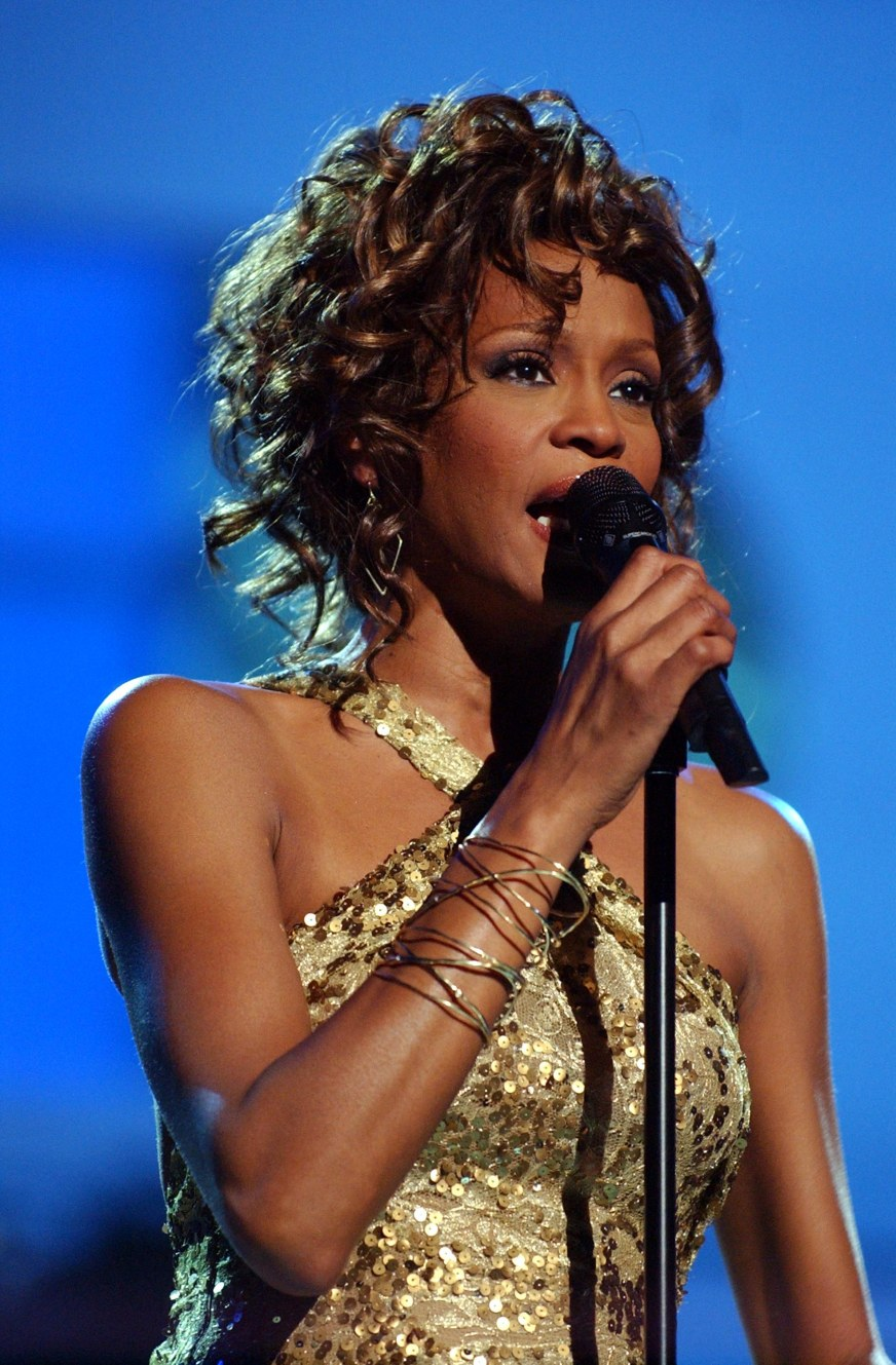 Lifetime's Whitney Houston Movie Will Be Directed By ...